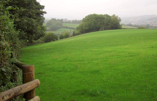 Field by Ridge Lane