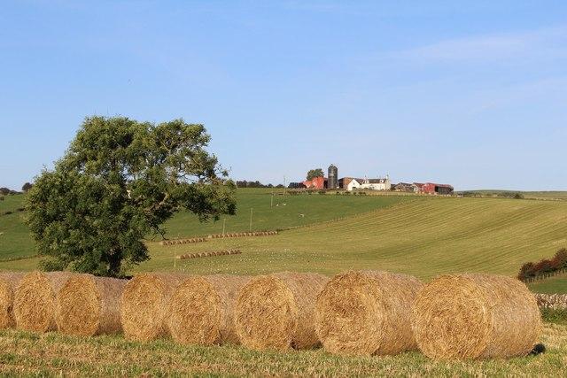 Hay Bales & view towards Mid Brockloch