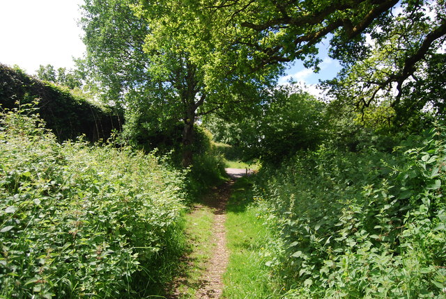 Footpath to Rye Green Farm