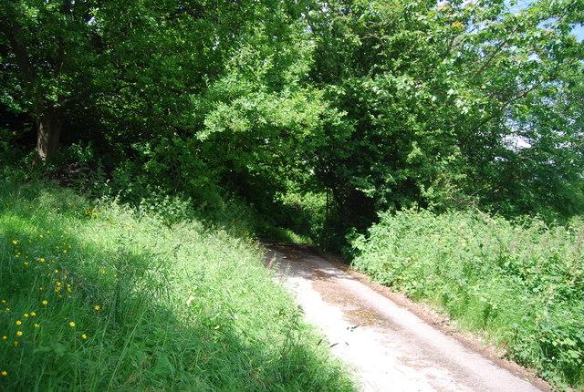 Farm track, Rye Green Farm