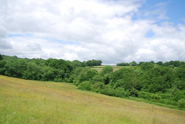 Countryside near Burwash Weald