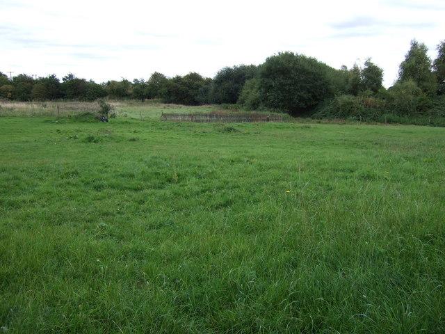 Farmland east of Fishley Lane