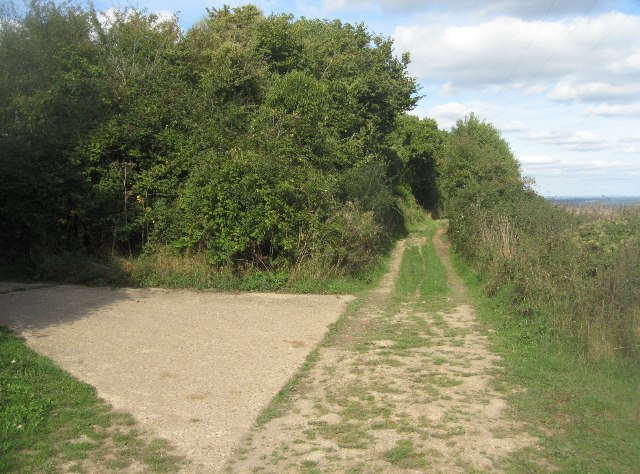 Byway over the Hampshire Downs