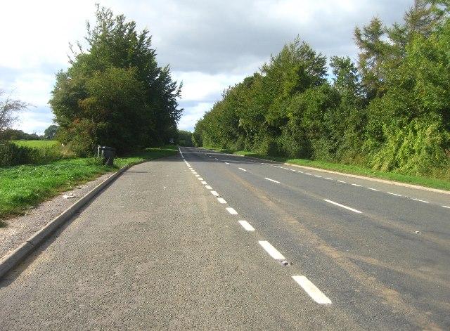 A339 - direction Kingsclere / Newbury