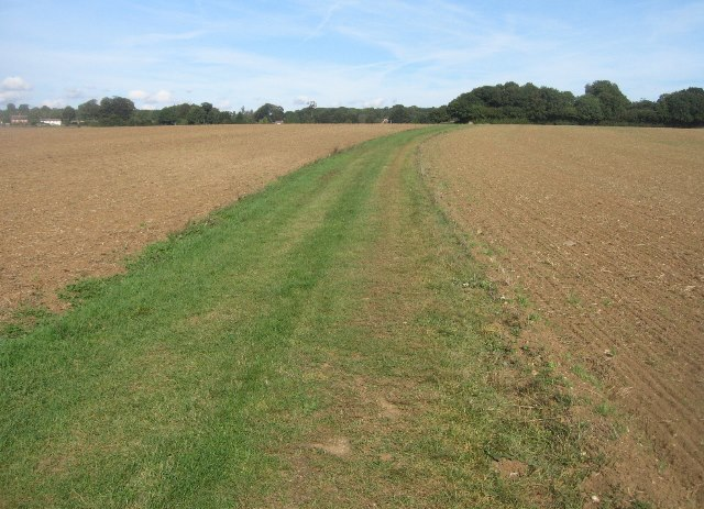 Byway towards Mother's Copse