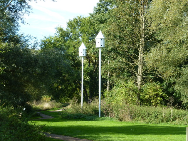 Bird boxes in Barnwell Country Park