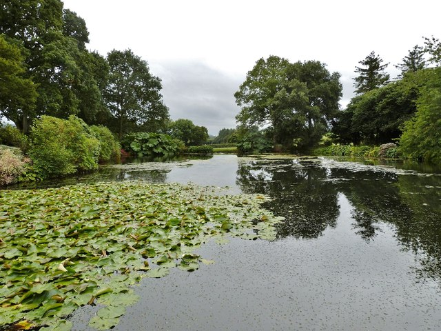 The Fishpond, Cadhay House