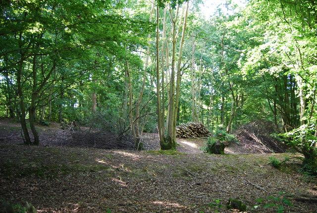 Wellhead Wood East