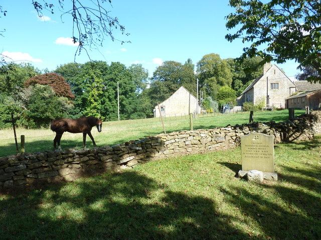 St Nicholas, Sandford Orcas: churchyard (4)