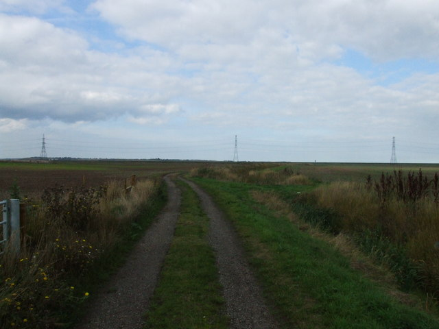 Footpath leading over Nagden Marshes