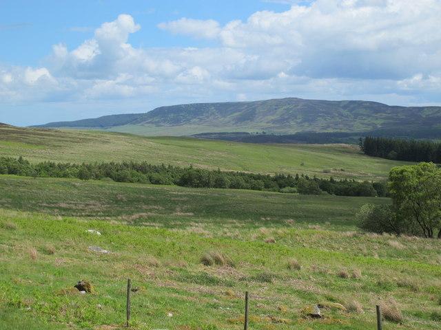 Rough pastures east of Craig