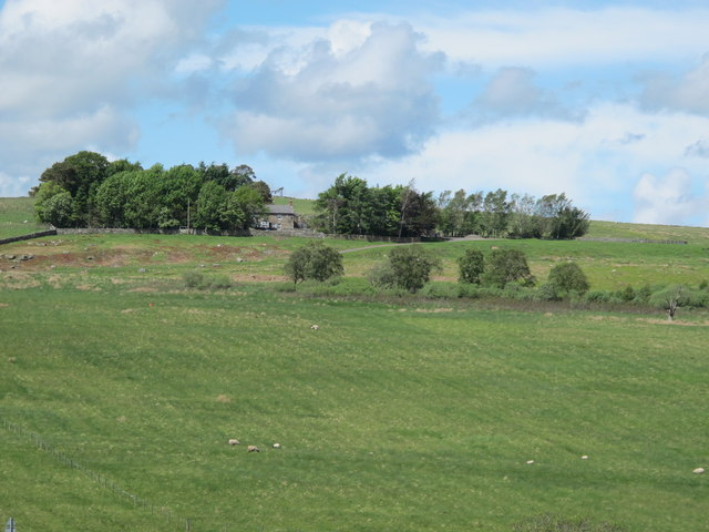 Rough pastures south of Craig