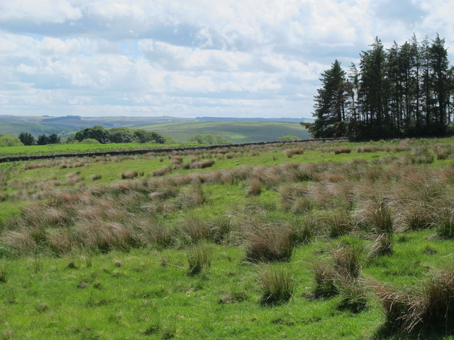 Moorland northwest of High Shaw