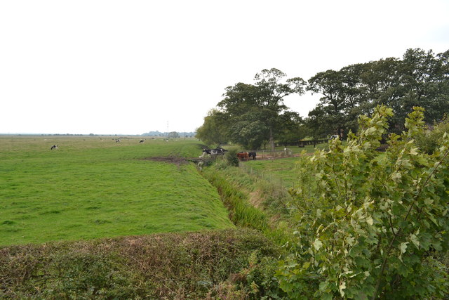 Dow Brook and Meadow, Preston New Road, Freckleton