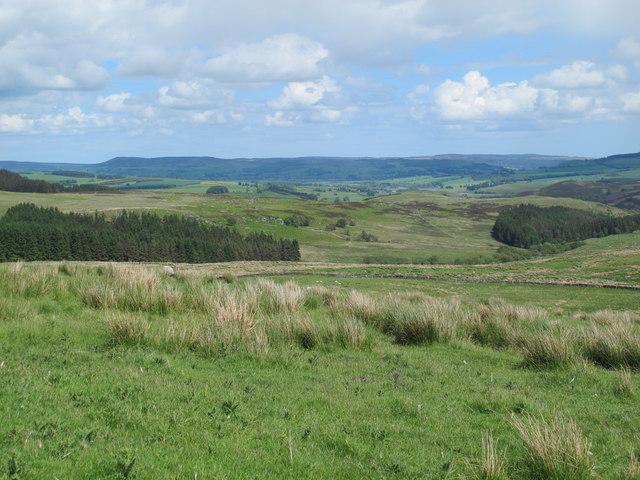 Rough pastures above Keenshaw Burn