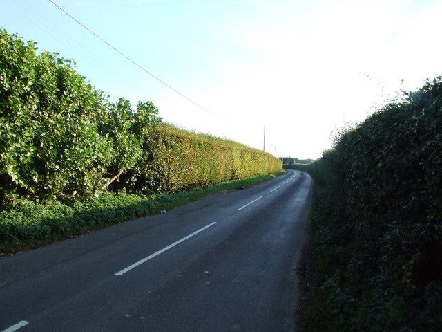 Homestall Lane, near Goodnestone