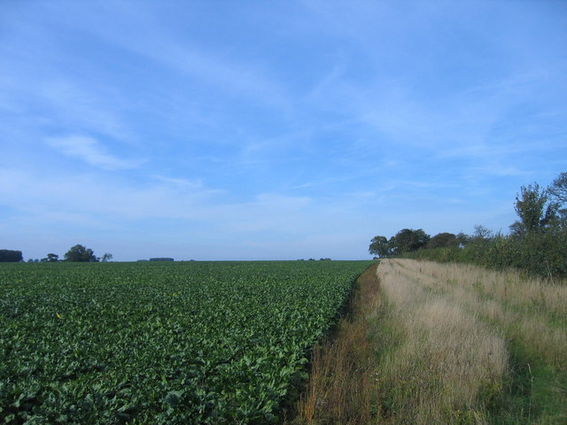 Site of planned Jack's Lane Wind Farm