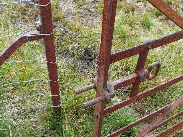Unusual gate latch