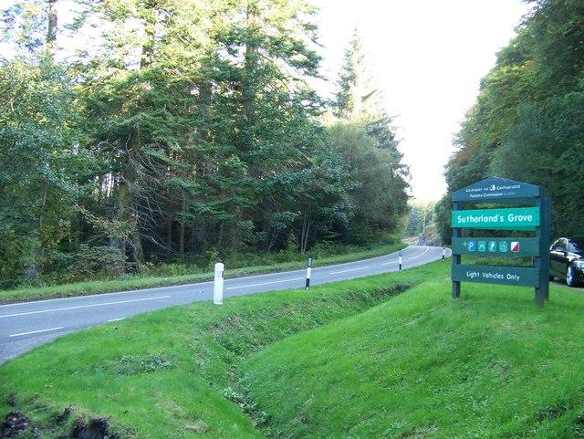 28 at Sutherland's Grove, Barcaldine
