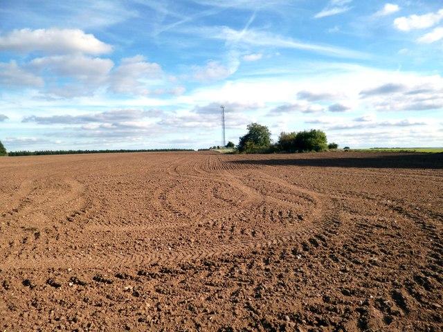 Tracks by Redlane Barn