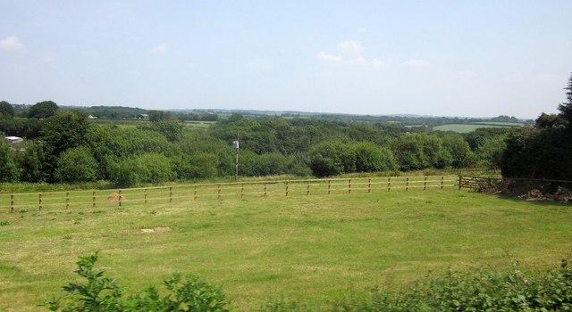 Field at East Burrow Farm