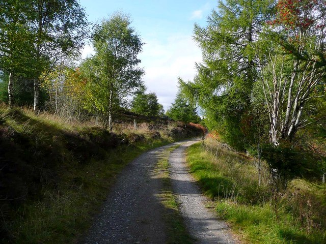 Track above the Lunan Burn