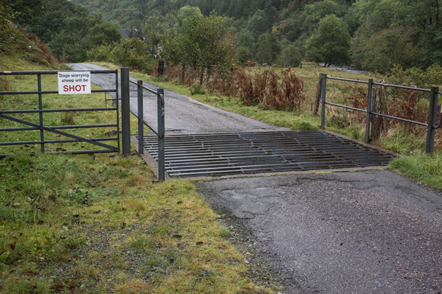 Cattle Grid with worrying sign!