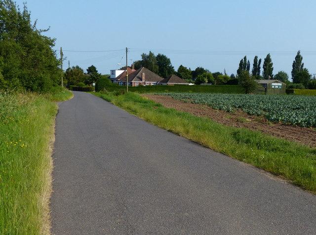 Millfield Lane West  near Wyberton