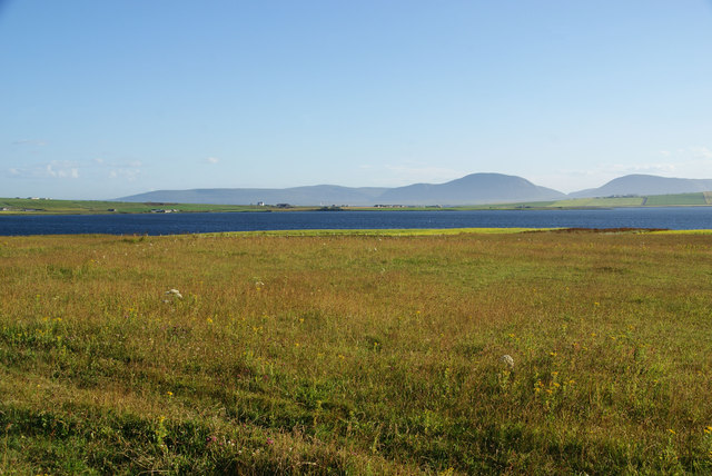 Grassland in evening light from the Ring of Brodgar