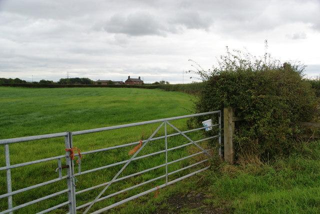 Bowdon View Farm
