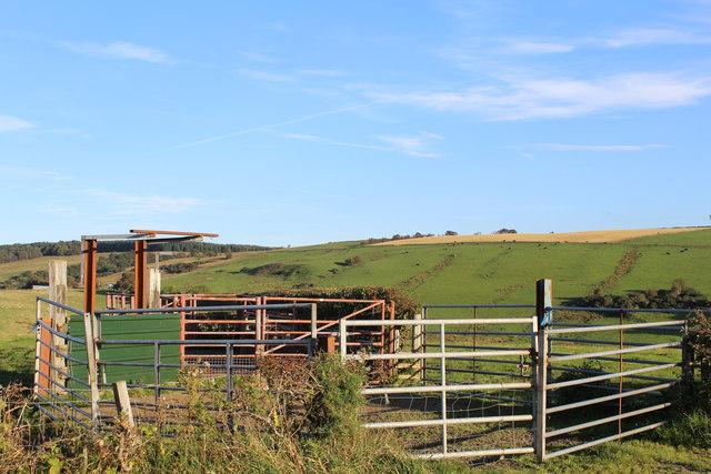 Livestock Pen south of Commonhead