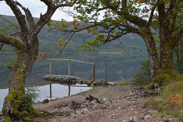 Deer fence in the loch