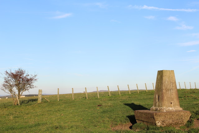 Trig Point on Guiltree Hill