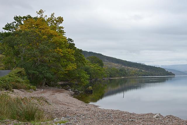 Loch Arkaig shoreline
