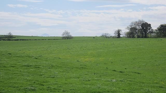 Field, Langlands