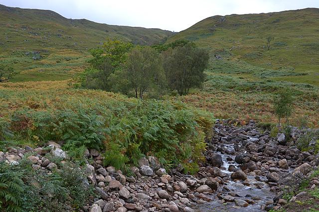 Allt na Caillich nearing Loch Arkaig