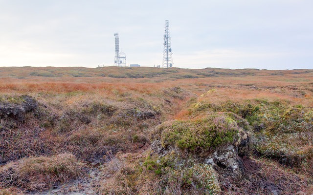 Crossing the bog towards the masts