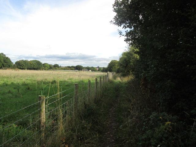 Bridleway towards Royston