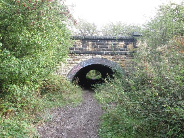 Footpath under the railway near Carlton Marsh