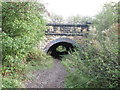 SE3709 : Footpath under the railway near Carlton Marsh by John Slater