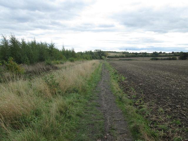 Bridleway near Belle Green, Cudworth