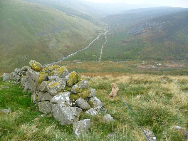 Bield above the Caldew