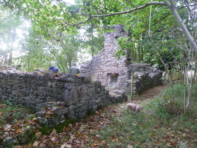 Ruin Eaves Wood