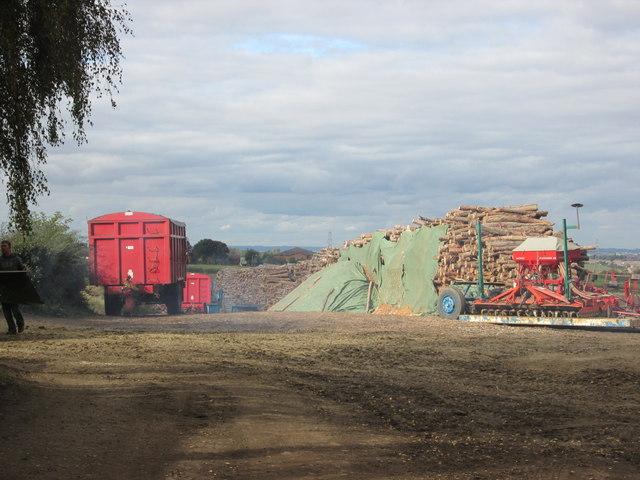 Timber stacks at Ringstone Hill