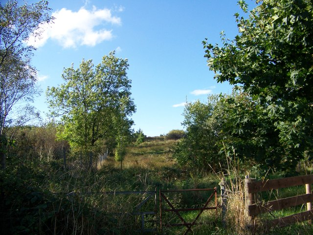 Rough pasture near Balure