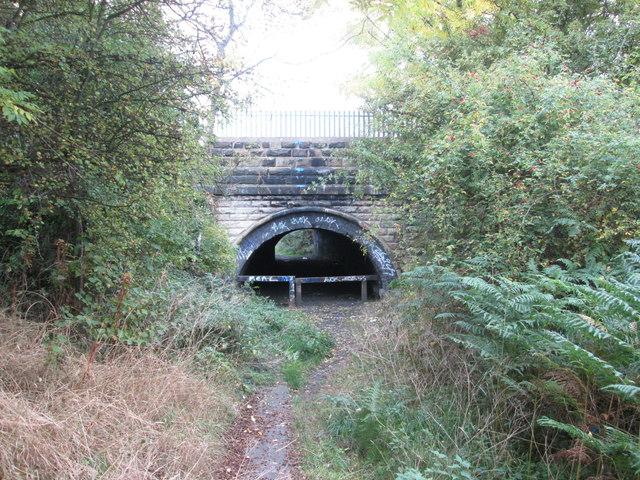 Path under the railway near Pool Ings, Royston