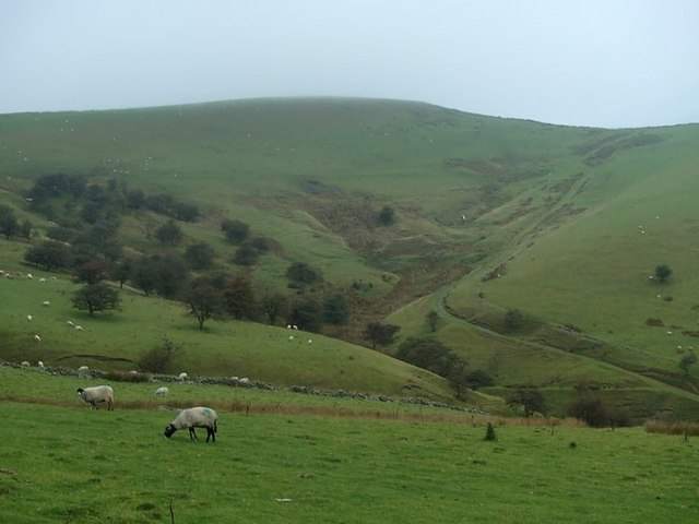Hillside and headwaters of Gnathole Brook