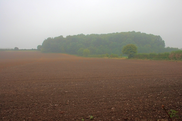 A Field Known as Depot