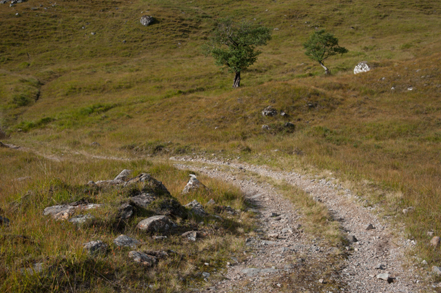 Moorland track to Corran
