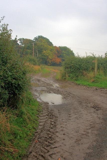Public Bridleway to Newton Morrell